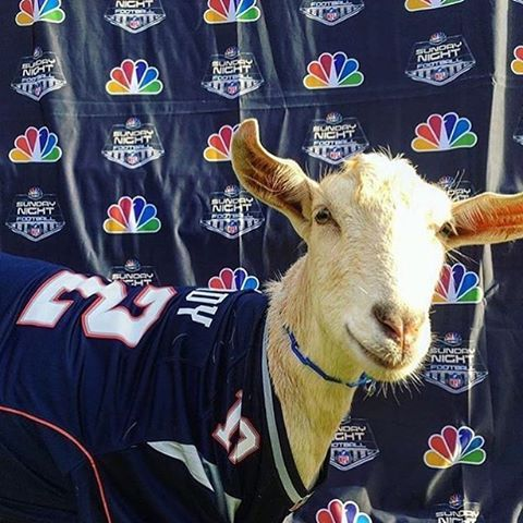 Time is a Flat Circle: Tom Brady Has Five Goats | The 300s